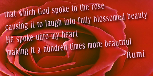 God spoke to my heart - Rumi